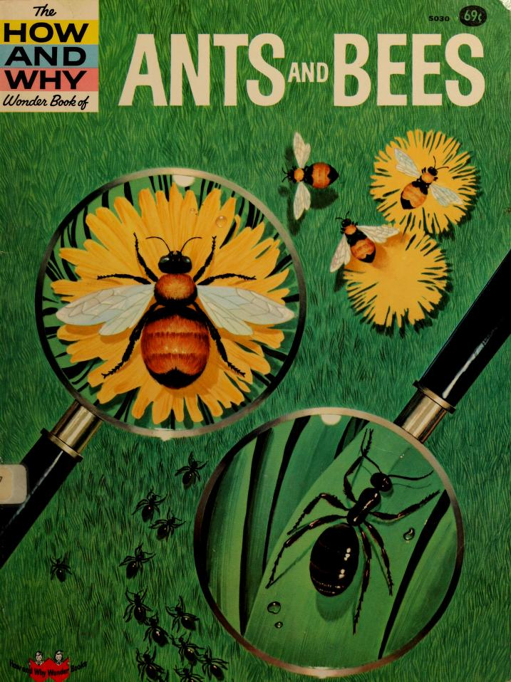 The how and why wonder book of ants and bees. by Ronald N. Rood